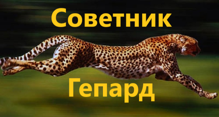 Обзор советника Gepard