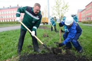 Услуги по улучшению локальной экосистемы