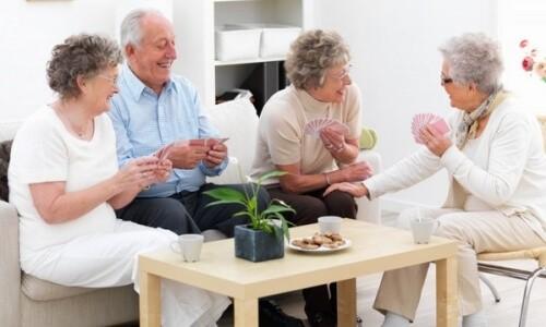 Бизнес план пансионаты для пожилых людей дома престарелых по ростовской области