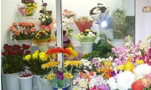 Ведение цветочного бизнеса