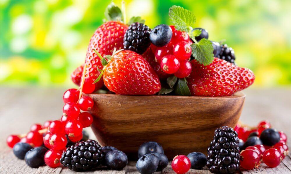 Ведение бизнеса по выращиванию ягод