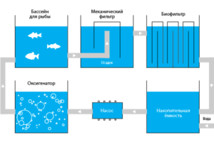 Схема УЗВ для рыбного водоема