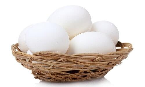 Рентабельный бизнес производство куриных яиц