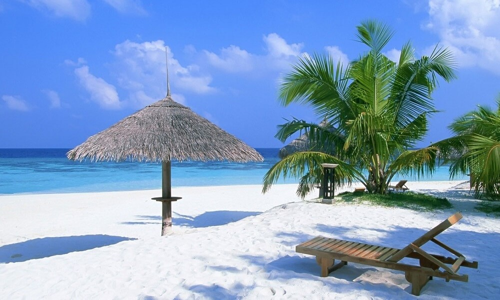 Бизнес план для туристического агенства