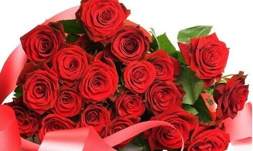 Бизнес на выращивании роз