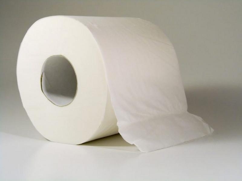 Бизнес-план по производству туалетной бумаги