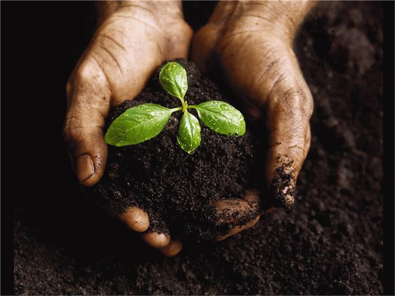 Готовый бизнес-план производства минеральных удобрений