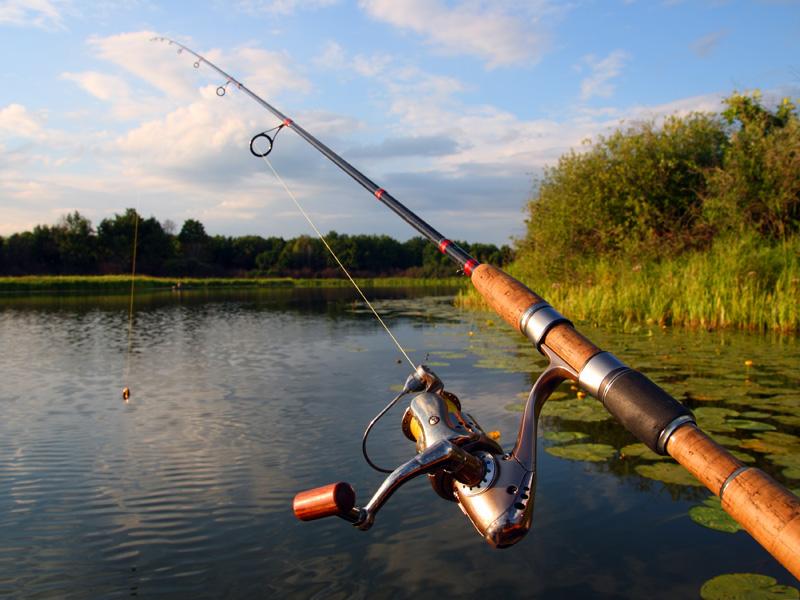 Организация платной рыбалки: бизнес-план